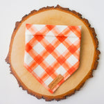 """Pumpkin Pie"" Pet Bandana"
