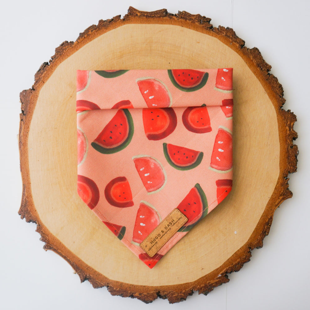 """Watermelon Sugar"" Bandana"