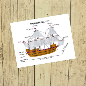 Mayflower Anatomy Poster
