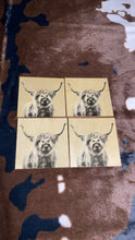 Load image into Gallery viewer, Highland Cow Coaster