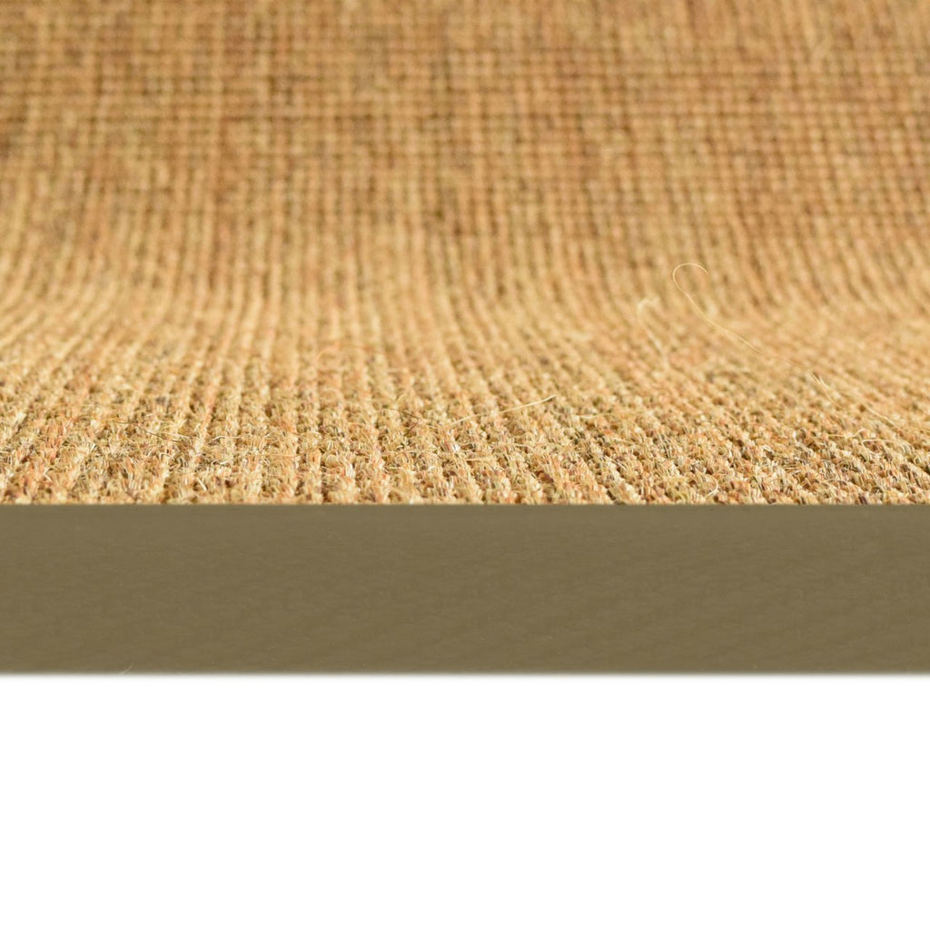 Bristol Natural Sisal Area Rug with Beige Color Border