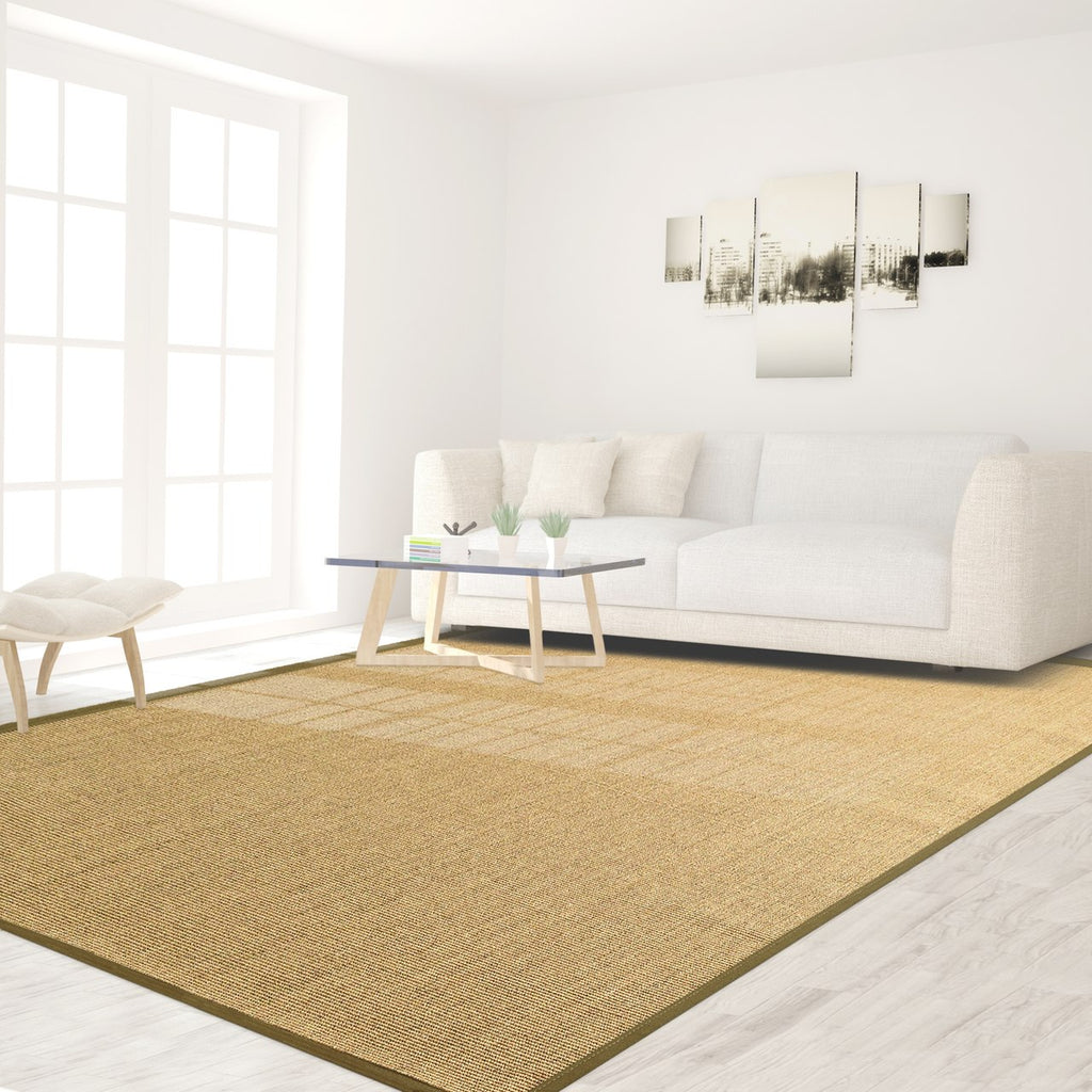 Bristol Natural Sisal Area Rug with Taupe Color Border