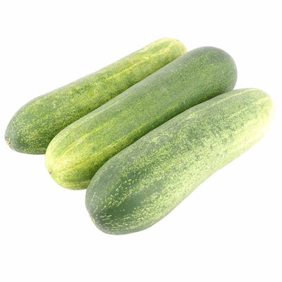 CUCUMBER GREEN FRESH - 1KG