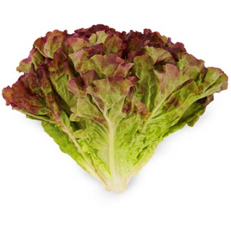 LETTUCE RED FRESH - 500GMS