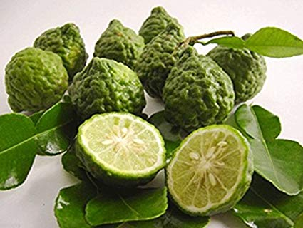 KAFFIR LEMON IMPORTED FRESH - 500GMS