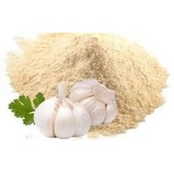 garlic powder b2b horeca