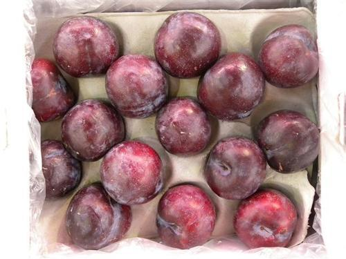 PLUM IMPORTED FRESH - 1KG