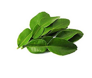 KAFFIR LIME LEAF IMPORTED FRESH - 500GMS