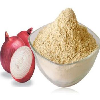 onion powder b2b horeca