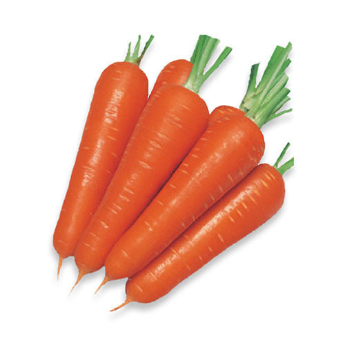 CARROT PINK (BANGALORE) FRESH - 1KG
