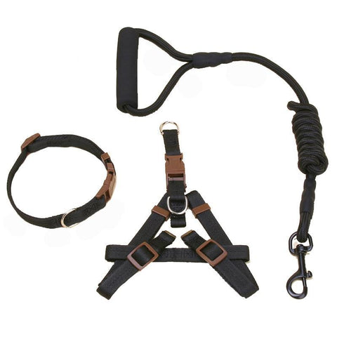Dog harness, leash and collar