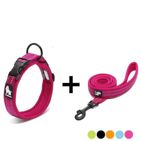 Adjustable and reflective dog collar and leash