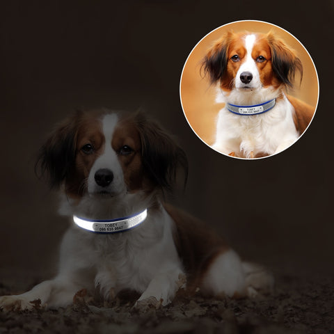Reflective personalised dog collar