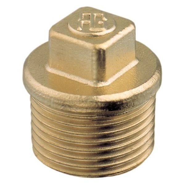 "Brass Plug 2"" B.S.P. (Male)"