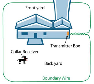 Waterproof Radio fence for Medium or Large Dog