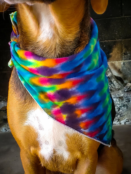Rainbow DNA Bandana