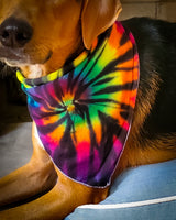 Midnight Rainbow Bandana