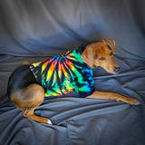 Midnight Rainbow Swirl Dog or Cat Tshirts