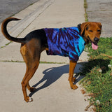 Electric Forest Swirl Dog or Cat Tshirts