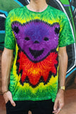 Jerry Bear - Purple and Green