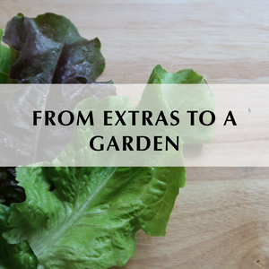 From Extras to a Garden