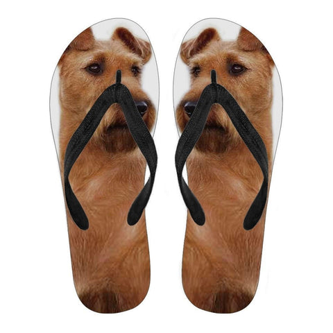 Irish Terrier Flip Flops For Men-Free Shipping