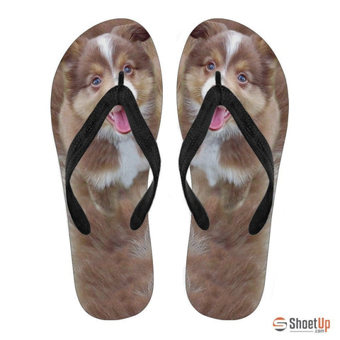 Miniature Australian Shepherd Puppy Flip Flops For Men-Free Shipping