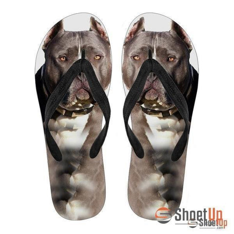 Pitbull Flip Flops For Men- Free Shipping