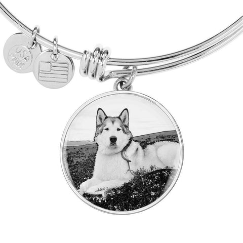 Alaskan Malamute Print Luxury Bangle-Free Shipping