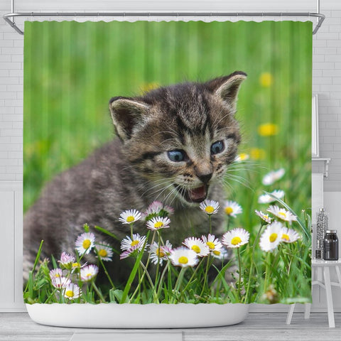 Cute American Shorthair Cat Print Shower Curtains-Free Shipping