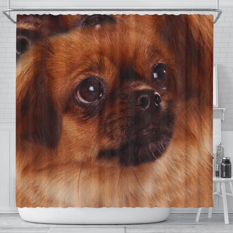 Tibetan Spaniel Dog Print Shower Curtain-Free Shipping