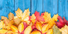 Our Top Tips To Prepare For The Change To Autumn