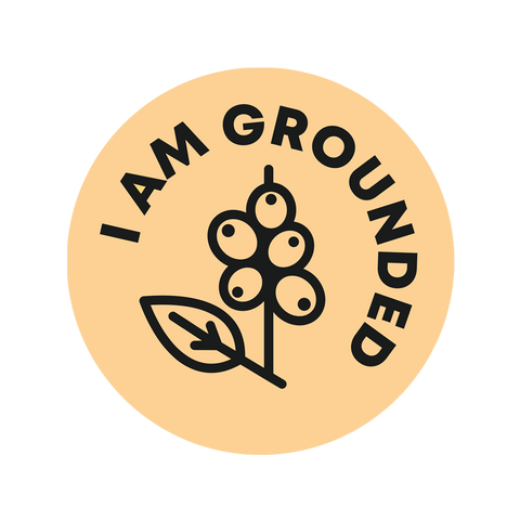 I Am Grounded Logo