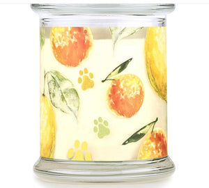 Pet House Candle - Citrus