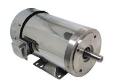 Washdown Electric Motor NEMA 4X (3600 RPM)
