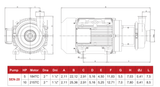 2 HP Hyginox Sen-20 Centrifugal Pump