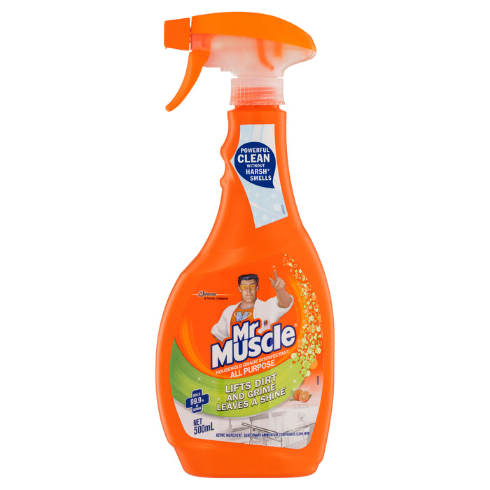MR MUSCLE ALL PURPOSE CLEANER RTU