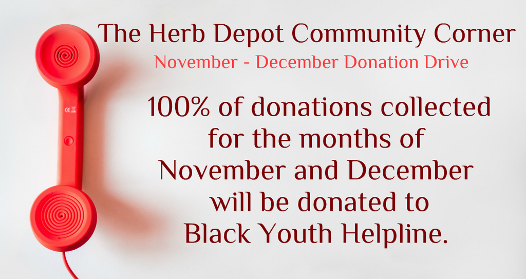 November-December Donation Drive: Black Youth Helpline
