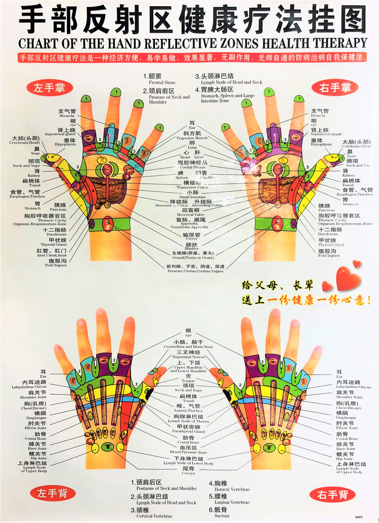 Chart of the Hand Reflective Zones Health Therapy 手部反射区健康疗法挂图