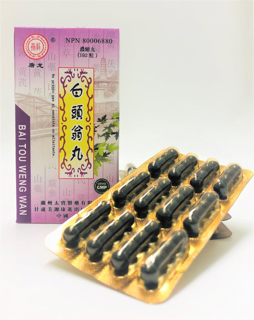 Bai Tou Weng Wan 白頭翁丸 (Blood Cooling, Stool Health)
