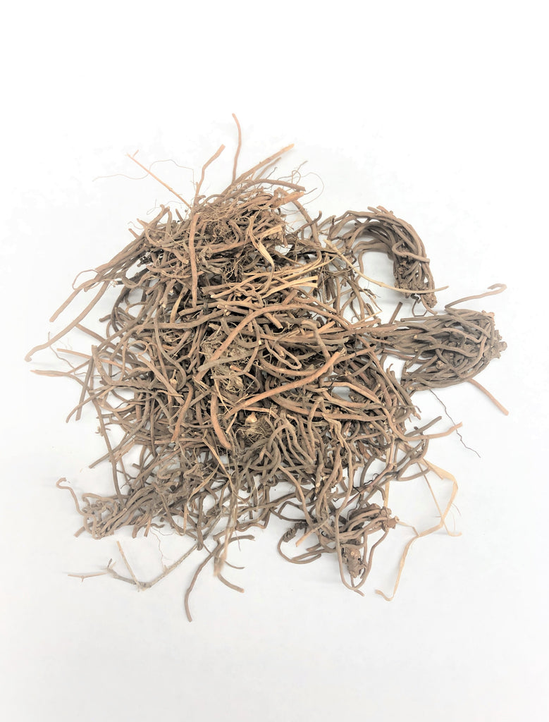 Bai Qian (Cynanchum Root, Rhizoma Cynanchi Stauntonii, 白前)