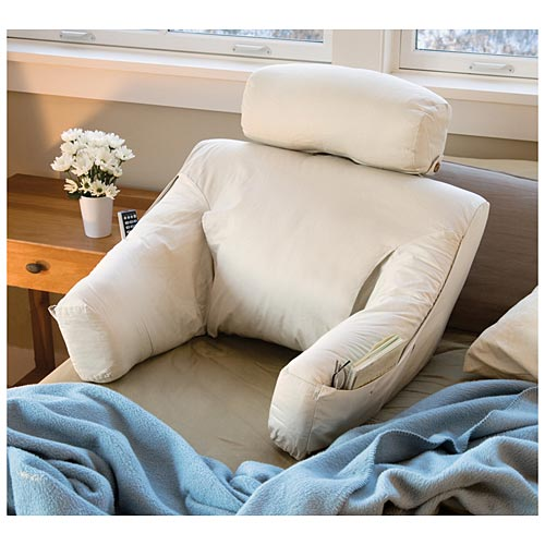 Bed lounger reading cushion