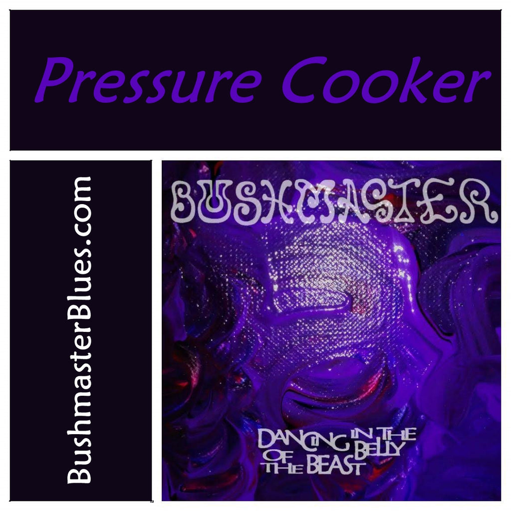 DBB11 Pressure Cooker - song download