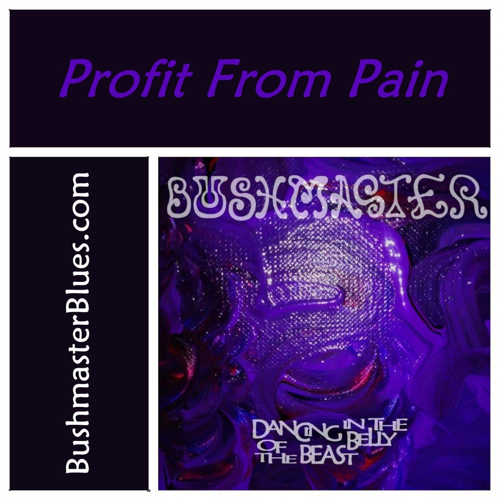 DBB13 Profit From Pain - song download