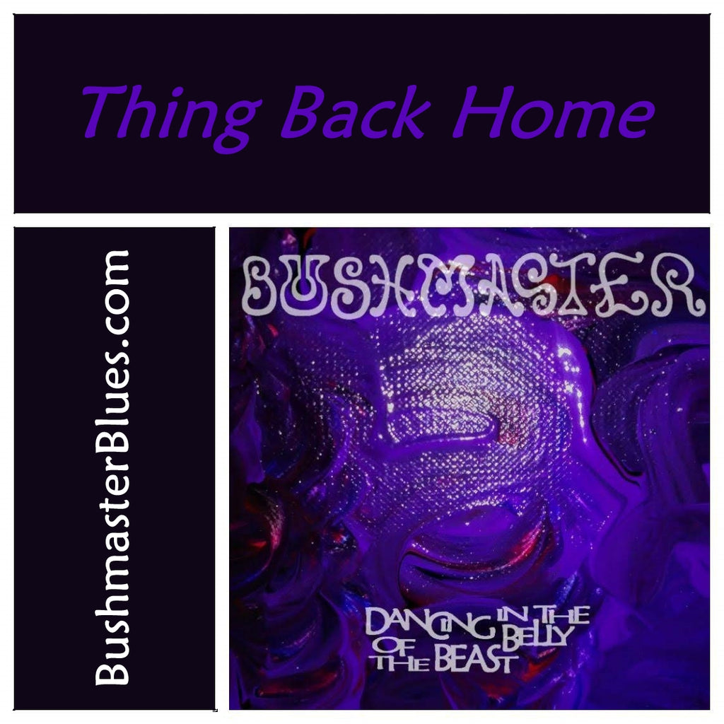 DBB14 Thing Back Home - song download