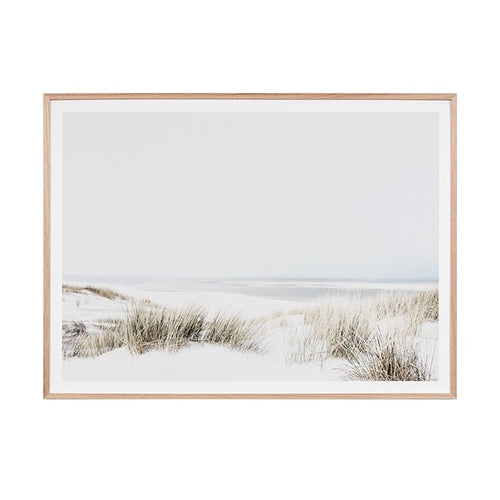 Sand Reed Dunes Print