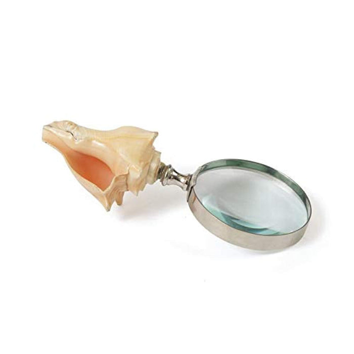 Seashell Magnifier