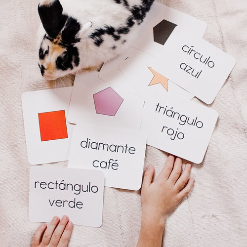 Simple Spanish flashcard set