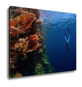Gallery Wrapped Canvas, Freediver Descending Along The Vivid Reef Wall Red Sea Egypt