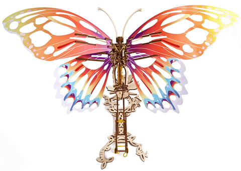 top section of wooden butterfly model kit